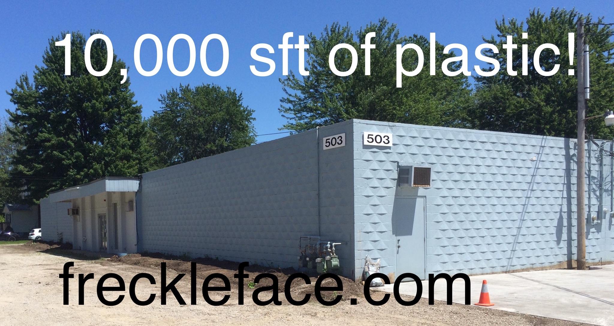 freckleface.com building